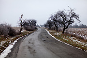The road leading from Rankovce to the neigbouring village of Kecerovce. The foundation ETP Slovakia has a project in Rankovce setting up micro-loan funds for the local Roma community. Loans from this fund will enable families to build their own low-cost brick homes, on land they own.