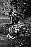 9336-K60  R. W. Heck fishing the Blitzen River in Harney County, Oregon. Note the Kodak camera case around his neck. about 1920