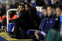 Birmingham City manager Gianfranco Zola in the dugout