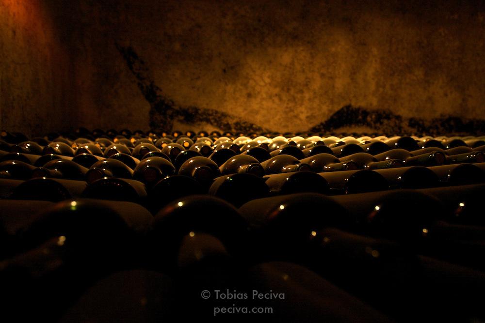 Bottles of Malbec aging in the wine cellar of Bodega Benegas, Luja?n de Cuyo, Mendoza, Argentina.