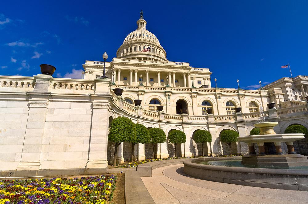Flowers, United States Capitol, Washington D.C., U.S.A.