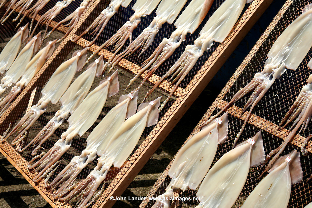 Dried Squid.  Fresh fish is an important form of food for the Japanese, who consume it nearly every day.