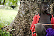 A boy sits under a tree while watching over cattle near the village of Dungu, Ghana on Friday June 8, 2007..