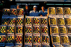 Stock photo of four men from the farmer's market in Houston Texas standing behind crates of fruit