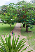 A worker walks down the path past a palm at the Roca Patricia, a partly restored farmhouse, Principe, Sao Tome and Principe<br /> Sao Tome and Principe, are two islands of volcanic origin lying off the coast of Africa. Settled by Portuguese convicts in the late 1400s and a centre for slaving, their independence movement culminated in a peaceful transition to self government from Portugal in 1975.