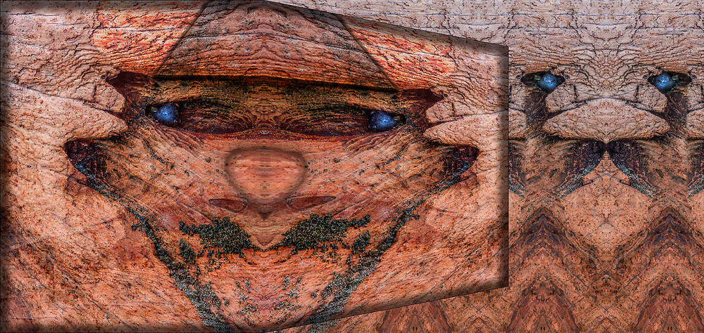 """Manchurian Mafia"", derivative image created from a photo of driftwood, overcast light, April, Dungeness National Wildlife Refuge, Olympic Peninsula, WA, USA"