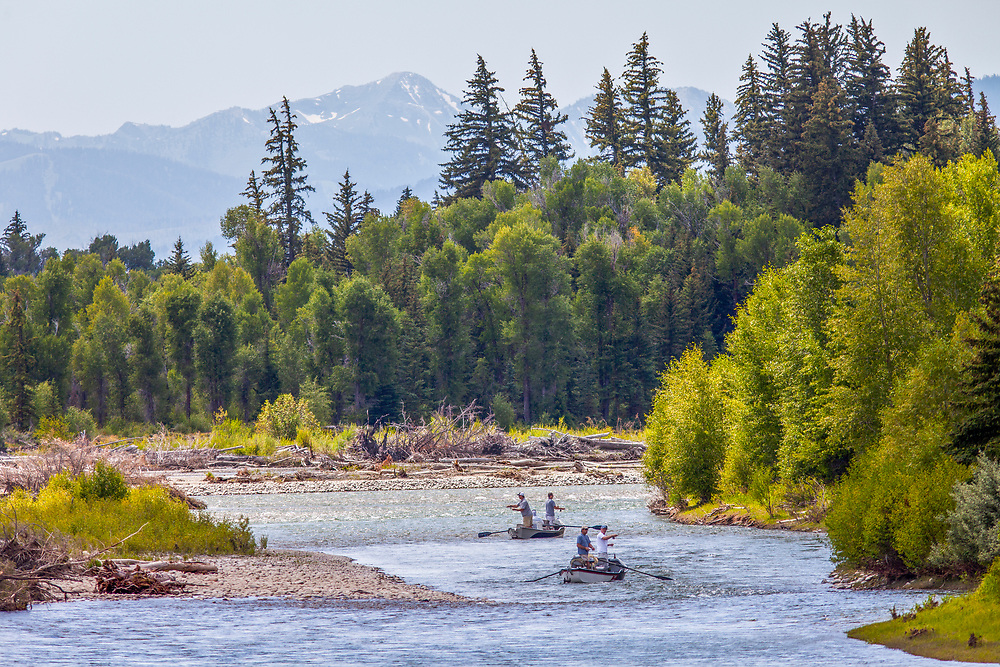 Four fly fishermen in two drift boats try their luck on trophy trout on the South Fork of the Snake River near Jackson Wyoming in Teton National Park