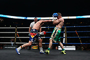 Boxen: Big Deal, Halbmittelgewicht, IBO Continental-Titel, Hamburg, 19.05.2017<br /> Sebastian Formella (GER) - Dennis Krieger (GER)<br /> © Torsten Helmke