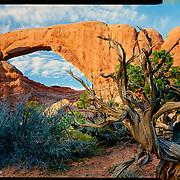 South Window, Arches National Park. 4x5 Kodak Ektar 100. photo by Nathan Lambrecht