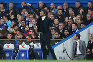 Antonio Conte, the Chelsea manager shouting from the touchline. Premier league match, Chelsea v Manchester Utd at Stamford Bridge in London on Sunday 23rd October 2016.<br /> pic by John Patrick Fletcher, Andrew Orchard sports photography.