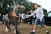 A man regains control of the horse he is leading by the bit at Appleby Horse Fair, the biggest gathering of Gypsies and travellers in Europe, on 14th August, 2021 in Appleby, United Kingdom. Appleby Horse Fair attracts thousands from Gypsy, Romany, and traveller communities annually, making it the biggest gathering of its kind in Europe. Generally held for a week every June, the fair was postponed in 2020 and pushed forward to August in 2021 due to Coronavirus.