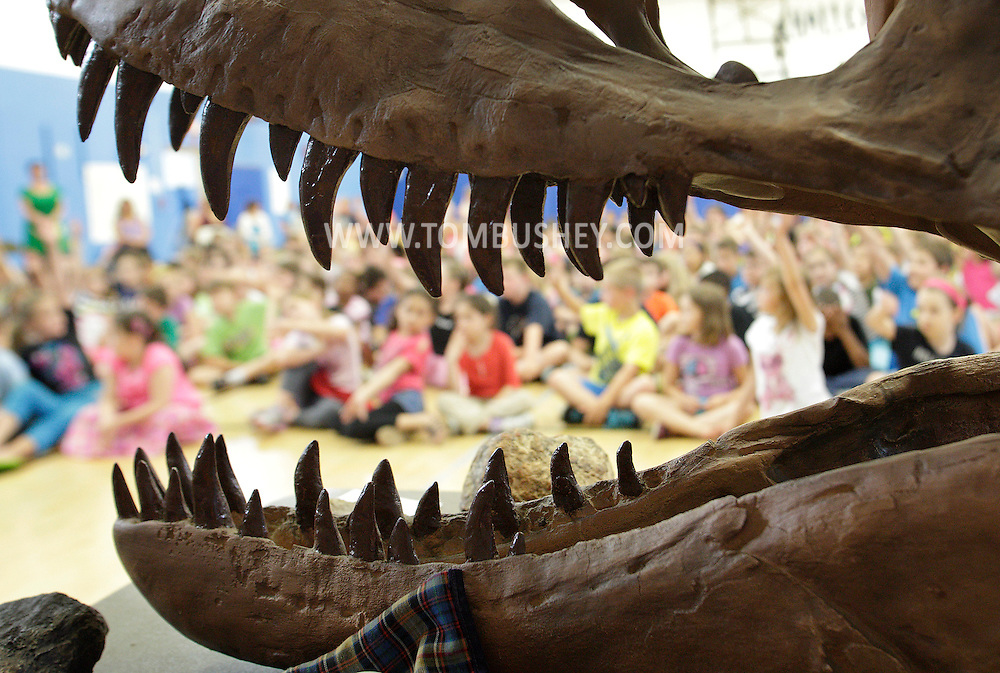 Ostrander Elementary School students listen to a presentation on dinosaurs that included an albertosaurus skull fossil in their school gymnasium in Wallkill on Monday, June 3, 2013. Field paleontologists Mike and Roberta Straka also showed an eight-foot triceratops skull fossil named Mr. Nixon. The albertosaurus skull is named Elvis. The presentation is part of the Wallkill Public Library's introduction to the Dig In and Read Summer Reading Program.