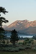 Morning light on the Sierra Nevada mountains in Hope Valley, Eldorado National Forest, California
