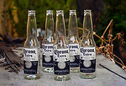 Empty Corona beer bottles