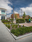 landscape architecture in central ashford, kent