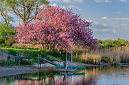 Bridgehamton. Hamptons, NY