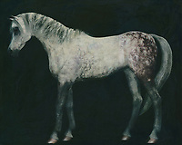 Horses are graceful and are also called noble animals. This painting of an Arabian horse doing a dressage exercise will certainly add value to any interior. Horses are unmissable in a rural environment. Not only in a country house will this painting of a horse come into its own. Also in a city environment horses can add just that little bit more to your interior. –<br /> -<br /> BUY THIS PRINT AT<br /> <br /> FINE ART AMERICA / PIXELS<br /> ENGLISH<br /> https://janke.pixels.com/featured/7-horses-white-horse-doing-dressage-exercise-jan-keteleer.html<br /> <br /> <br /> WADM / OH MY PRINTS<br /> DUTCH / FRENCH / GERMAN<br /> https://www.werkaandemuur.nl/nl/shopwerk/Arabisch-paard-rechtop/770256/132?mediumId=1&size=70x55<br /> –<br /> -