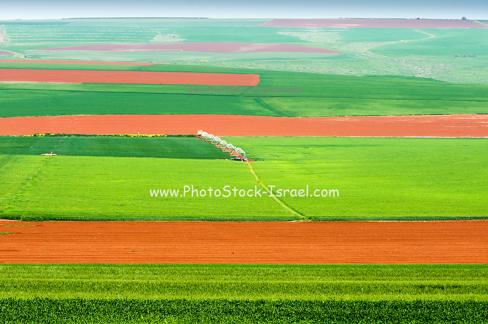 elevated view of fertile agricultural land