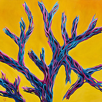 The skeleton of a cholla cactus forms an intricate pattern against the fiery brilliance of a suggested desert sunset.<br /> 24 x 24, oil on aluminum panel<br /> $1500