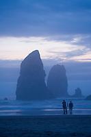 Scenic of Cannon Beach, Oregon.