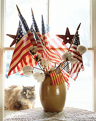 American flag, red,white,blue with cat looking threw window