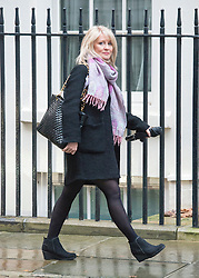 © Licensed to London News Pictures. 18/11/2014. Westminster, UK. Esther McVey MP. Ministers and MP's on Downing Street 18th November 2014. Photo credit : Stephen Simpson/LNP