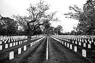 The rows of tombstones at the Old Soldier's Cemetery are a haunting vision of what awaits us during the pandemic.