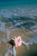 Beach, Hawaii, USA<br />