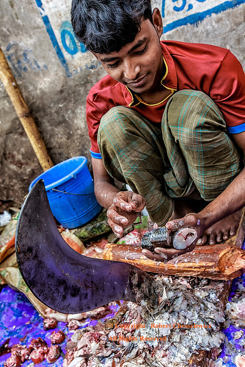 Fish Sales: A young fish monger prepares and sections his catch using a very large, curved knife, street side in Dhaka Bangladesh.