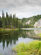 Spruce trees are reflected in Horseshoe Lake, Denali National Park, Alaska, on an overcast day.