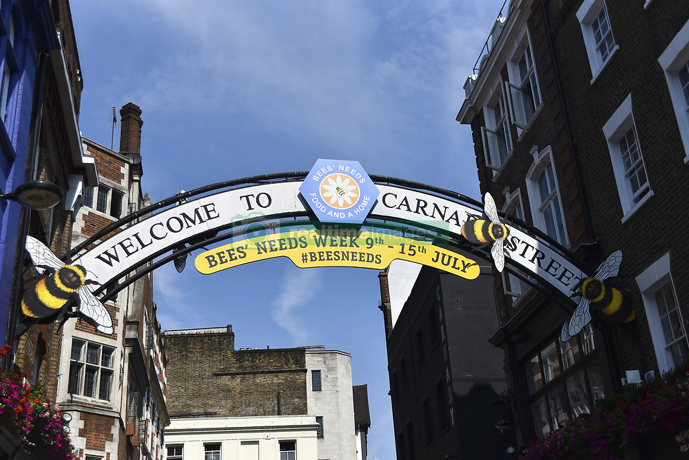 July 6, 2018 - London, United Kingdom - Carnaby Street is decorated to support the campaign for the bees and pollinators, London on July 6, 2018. The world-famous shopping destination will be renamed 'Carnabee Street' and transformed into a hive of activity in support of the annual Department for Environment, Food and Rural Affairs (Defra) campaign to raise awareness of bees and other pollinators, and importantly, what people can do to help them thrive. (Credit Image: © Alberto Pezzali/NurPhoto via ZUMA Press)