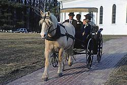 Wedding Carraige At Martha Mary
