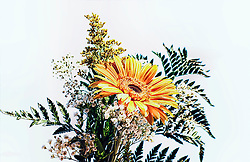 A floral assortment topped by a prominent orange gerber daisy with bleached and muted color tones against a white backdrop.<br />