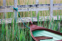 Boat docked in reeds at Ashford Castle, built in 1228 and now a luxury resort, Cong, County Mayo, Ireland