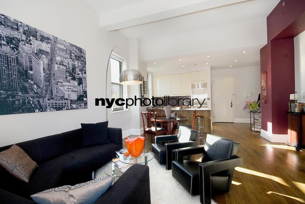 Living Room at 263 Ninth Avenue