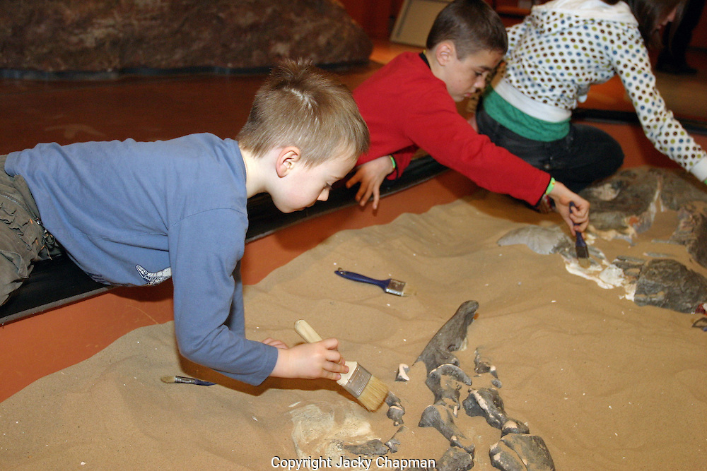 Young children learning about archaeology by un covering dinosaur  bones at a museum of science.