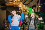 NO FEE PICTURES<br /> 17/12/17 Finn Kealy, age 8, Irishtown and Alexander McLay age 8 Sandymoint pictured at the prehistoric preview and official opening of Dinosaurs Around The World now open at the the Ambassador Theatre  for a limited time only. Embark on a globetrotting expedition around the world to discover the Age of Reptiles! With advanced animatronics, a multi-layered narrative, fossils, authentic casts, cutting-edge research and immersive design elements you'll experience the Age of Reptiles as it comes to life!  Dinosaurs Around the World is open daily to the public from 10 a.m. with last entry at 6pm for a limited time only. Tickets available from Ticketmaster.ie and from the Ambassador Theatre Box Office now. Visit www.mcd.ie for more. Pictures: Arthur Carron