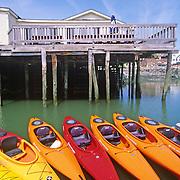 Kayaks tied to the dock in the Damariscotta River. Damariscotta, Maine