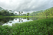 An early morning storm lifts from the Raspacullo river, Belize.