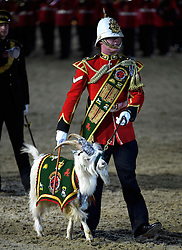 © Licensed to London News Pictures. 15/05/2016. Windsor, UK.  A member of the Royal Welsh Fusiliers with their mascot, a got. An evening event held at the Royal Windsor Horse show to celebrate the 90th birthday of HRH Queen Elizabeth II. Acts from arounds the world have been invited to perform at the evening event, set in the grounds of Windsor Castle. Photo credit: Ben Cawthra/LNP