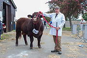 Richard Man with his champion bull at the annual Suffolk Show at the Suffolk Show Ground on the 29th May 2019 in Ipswich in the United Kingdom. The Suffolk Show is an annual show that takes place in Trinity Park, Ipswich in the English county of Suffolk. It is organised by the Suffolk Agricultural Association.