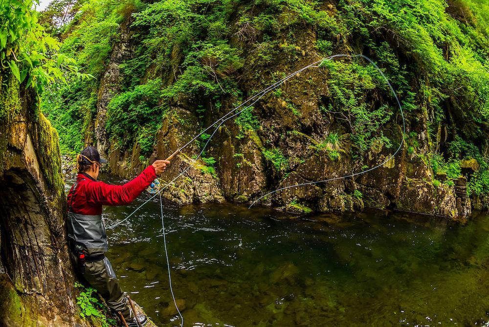 Flyfishing guide from Sitka Alaska Outfitters fishing Sawmill Creek, near Sitka, Alaska USA.