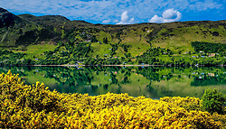 Reflections in Loch Broom near Ullapool, Ross-shire, Scotland<br /> <br /> (c) Andrew Wilson   Edinburgh Elite media