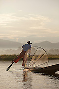 A fisherman uses a conical net a rows with his leg, both traditional methods, to catch fish on Inle Lake, Myanmar