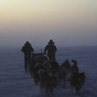 Dogsledding through midnight fog on frozen Arctic Ocean, Canada.