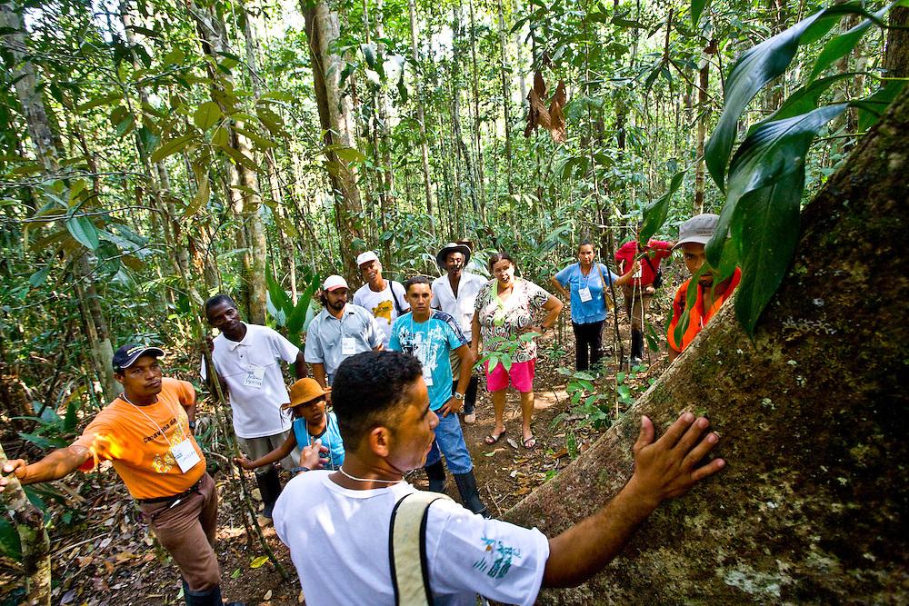Porto Seguro_BA, Brasil...Reserva Particular do Patrimonio Natural (RPPN) em Porto Seguro, Bahia...The Private Reserve of Natural Heritage (RPPN) in Porto Seguro, Bahia...Foto: JOAO MARCOS ROSA / NITRO.