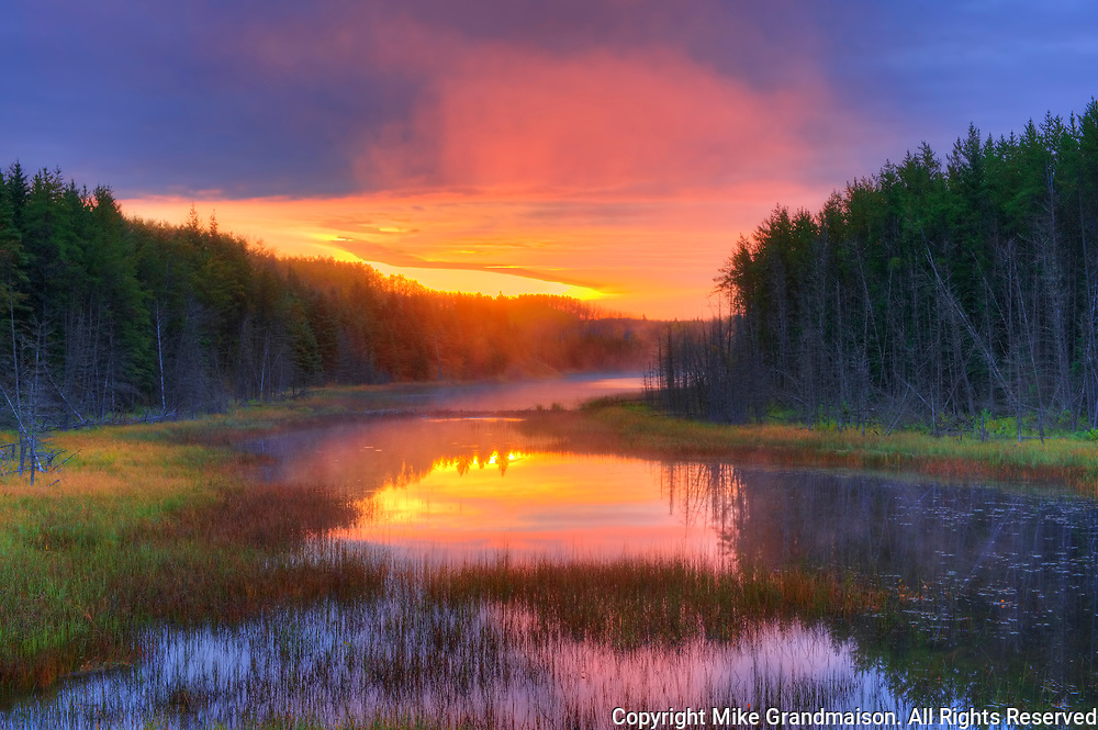 Wetland in fog at sunrise<br />Duck Mountain Provincial Park<br />Manitoba<br />Canada