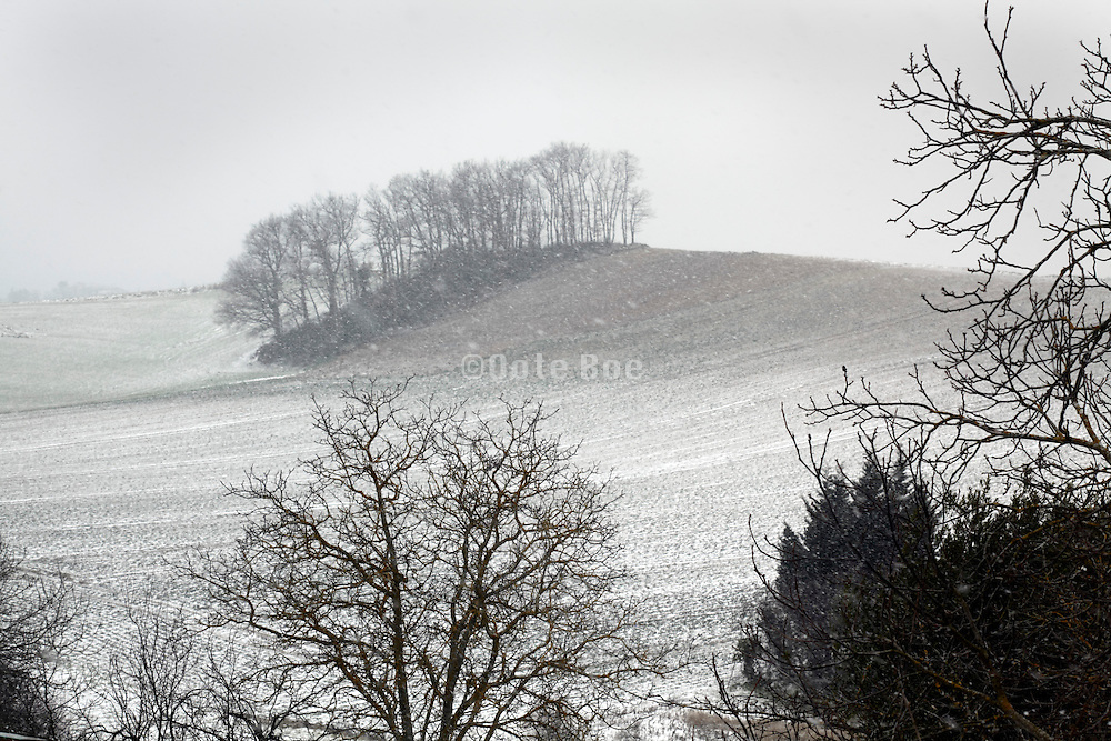 wintery landscape view with light snow on the ground