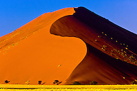 Sossusvlei Sand Dunes (highest dunes in the world), Namib Desert, Namib-Naukluft National Park, Namibia