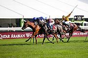 Longchamp Race course, Paris, France. .October 1st 2011..Qatar Prix de l'Arc de Triomphe..The most competitive mile and half race in the world.....